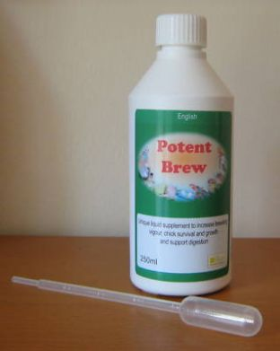 POTENT BREW 250ml - POWERFUL SUPPLEMENT- Birdcare Co.